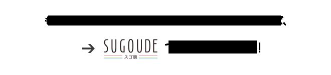 SUGOUDE(スゴ腕)が解決できます